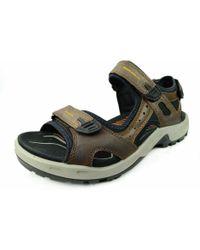 Ecco Komfort Sandalen - Mehrfarbig