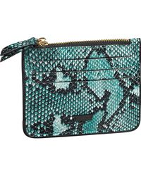 Scotch & Soda Faux Snakeskin Card Holder - Green