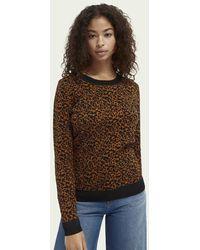 Scotch & Soda Intarsia-gebreide Katoenen Sweater - Bruin