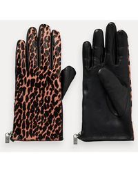 Scotch & Soda Leren Handschoenen Met Dierenprint - Zwart