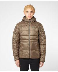 Jack Wolfskin Argon Thermic Jacket - Green