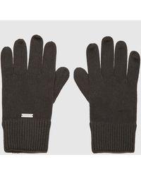 Calvin Klein Knitted Gloves - Black