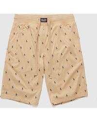 Polo Ralph Lauren Underwear All Over Print Fleece Shorts - Brown