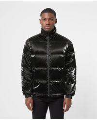 Armani Exchange Shiny Baffle Padded Jacket - Black