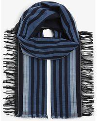 Loewe Stripe Logo Cotton Scarf - Blue