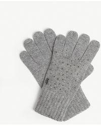 Ted Baker Hotfix Gloves - Gray