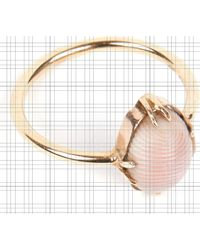 Annina Vogel 9 Carat Gold And Conch Shell Ring - Metallic