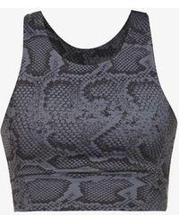 All Fenix Python-print Stretch-jersey Sports Bra - Grey