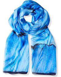 Beatrice Jenkins - Blue Morpho Silk Scarf - Lyst