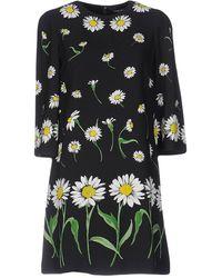 Dolce & Gabbana - Chamomile Viscose Stretch Dress Black Dr1038 - Lyst