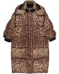 Dolce & Gabbana Oversized Leopard Puffer Coat - Brown