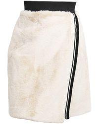 Dolce & Gabbana Fur A-line Skirt - Multicolour