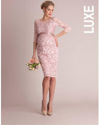 Seraphine Blush Lace Maternity Cocktail Dress - Pink