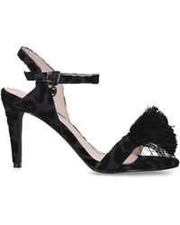 Miss Kg Perry Occasion Black