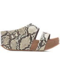 Volatile Abbington Sandal - Multicolor