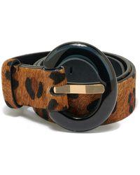 Lizzie Fortunato Sofia Belt In Dark Leopard - Multicolor
