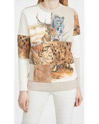 Stella McCartney - Nature Patchwork Sweatshirt - Lyst