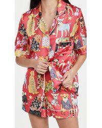 Karen Mabon Fashion Dogs Pink Short Pyjama Set