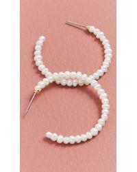 Lele Sadoughi Imitation Pearl Medium Hoops - Pink