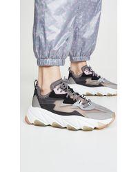 Ash Eclipse Sneakers - Black