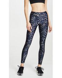 Koral Drive Cheetah-print Leggings - Blue