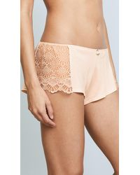 Only Hearts - Venice Hipster Shorts With Lace Insets - Lyst