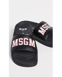 MSGM University Pool Slide Sandals - Black