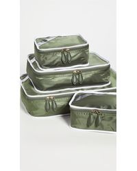 Paravel Packing Cube Quad - Green