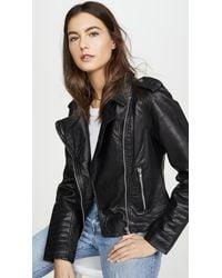 BB Dakota Hello Moto Leather Jacket - Black