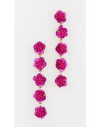 Shashi - English Rose Earrings - Lyst