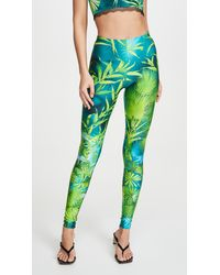 Versace Palm Print Leggings - Green