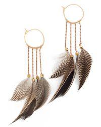 Serefina - Statement Feather Hoop Earrings - Lyst