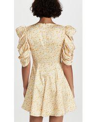 AMUR Fit And Flare Printed Mini Dress - Natural