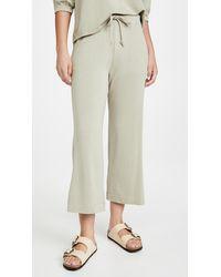 Sundry Cropped Flare Sweatpants - Multicolour