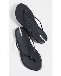 Ipanema Philippe Starck Thing M Ii Flip Flops - Black