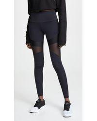 Onzie Royal Leggings - Black
