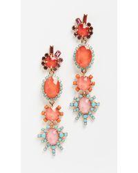 Elizabeth Cole Blair Earrings - Multicolour
