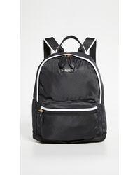 Paravel Mini Fold Up Backpack - Black