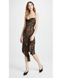 Misha Collection - Emilia Leopard Dress - Lyst