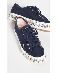 Keds X Rifle Paper Co. Triple Kick Strawberry Fields Sneakers - Blue