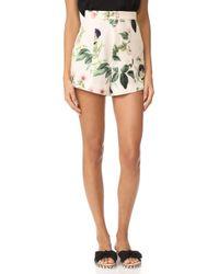 StyleStalker Angeles Shorts - Multicolor
