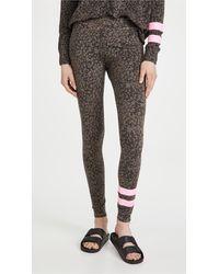 Sundry Stripe Floral Yoga Trousers - Multicolour