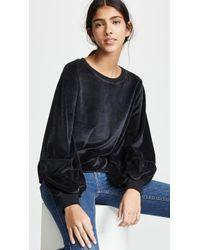 Nation Ltd Kiera Velvet Lantern Sleeve Top - Black