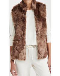 BB Dakota Fur What It's Worth Faux Fur Vest - Multicolour
