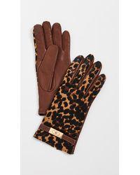 Tory Burch Leopard Lee Lock Gloves - Brown