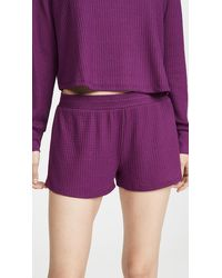 Honeydew Intimates Sneak Peek Waffle Knit Lounge Shorts - Purple