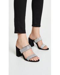 Alice + Olivia Laleah Double Strap Sandals - Black