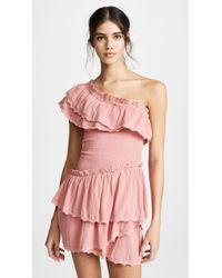 s t e e l e. Melody Ruffle Dress - Pink