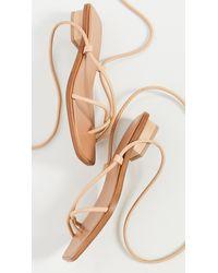LOQ Ara Strappy Sandals - Multicolor