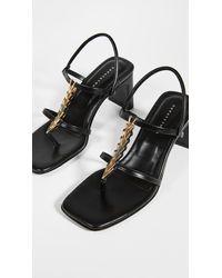 Dorateymur Narcissist Thong Sandals - Black